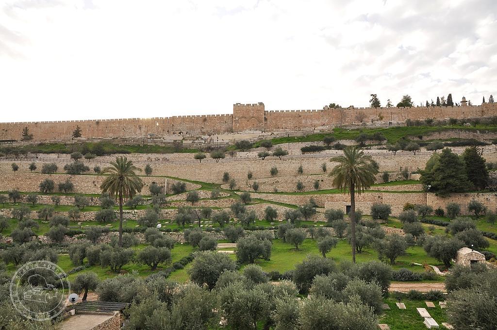 Mury Jerozolimy z doliny Cedronu