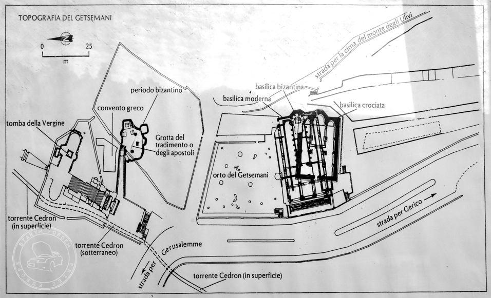 Plan Ogród Gatsemani, Ogrójec, Ogród Oliwny